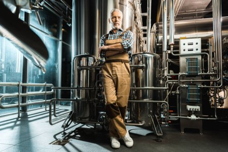 Photo for Brewer posing with crossed arms in working overalls in brewery - Royalty Free Image