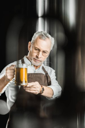 professional brewer examining beer in glass in brewery