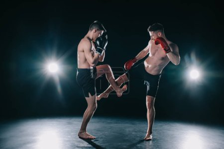 Photo for Strong mma fighter kicking another sportsman during training - Royalty Free Image