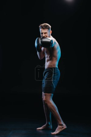 muscular shirtless strenuous boxer in