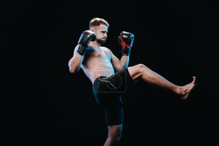 Photo for Muscular barefoot strenuous boxer in boxing gloves and shorts doing kick isolated on black - Royalty Free Image