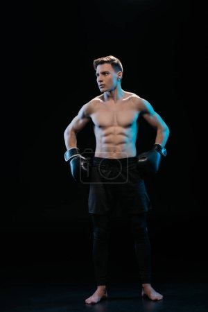 confident muscular sporty boxer in boxing gloves posing on black