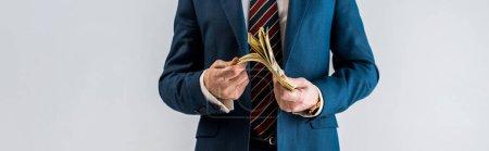 Photo pour Plan panoramique d'un homme d'affaires mature en costume tenant des billets en dollars isolés sur du gris - image libre de droit