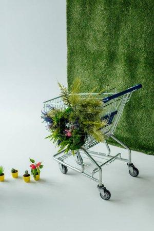 Foto de Cesta con flores y helechos en blanco con verde hierba - Imagen libre de derechos