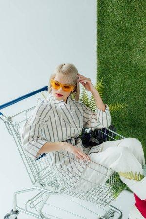 belle fille élégante assise dans le panier avec fougère et posant sur blanc avec herbe verte