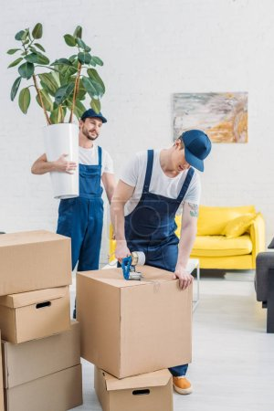 Photo for Mover holding plant and looking at colleague wrapping cardboard box with scotch tape in apartment - Royalty Free Image