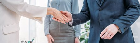Photo for Panoramic shot of recruiter shaking hands with employee near colleague - Royalty Free Image