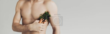 Photo for Panoramic shot of shirtless man cutting plant on armpit with secateurs isolated on grey - Royalty Free Image
