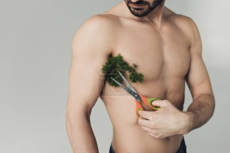Photo for Partial view of bearded shirtless man cutting plant on armpit with scissors isolated on grey - Royalty Free Image