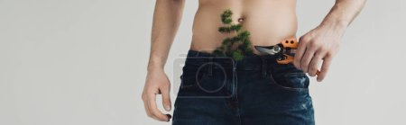 Photo for Panoramic shot of man in jeans with plant in pants holding secateurs isolated on grey - Royalty Free Image