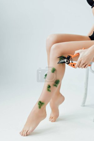 Photo for Partial view of woman cutting plants on legs with secateurs on grey - Royalty Free Image