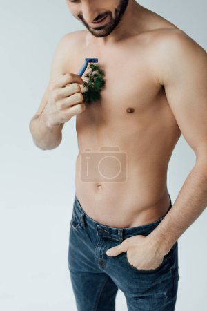 Photo for Partial view of bearded man shaving plant on chest isolated on grey - Royalty Free Image