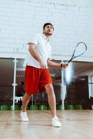 Photo pour Vue pleine longueur du sportif dans le polo blanc jouant le squash dans la cour à quatre murs - image libre de droit