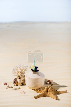 Photo for Coconut cocktail, starfish, coral and sea stones on sandy beach with copy space - Royalty Free Image