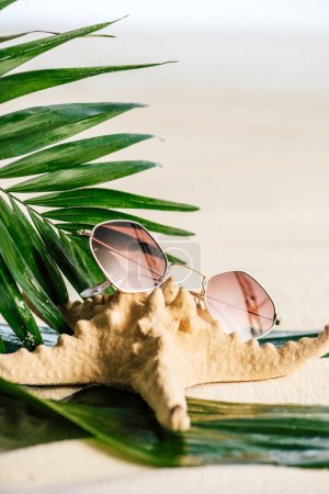Photo for Sunglasses, palm leaves and starfish on white - Royalty Free Image