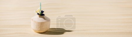 panoramic shot of coconut cocktail with flower on sandy beach with copy space