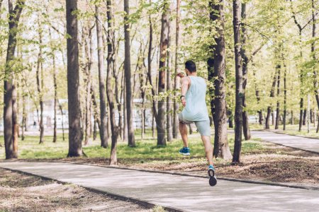 Photo for Back view of young man in sportswear exercising in green sunny park - Royalty Free Image