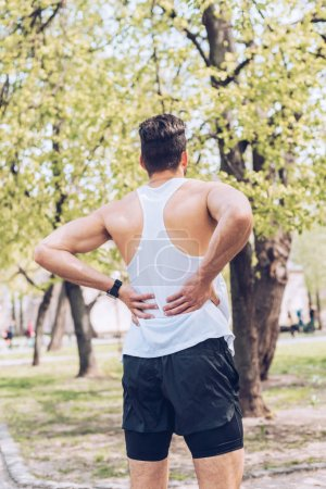 Photo for Back view of young sportsman standing in park and touching injured back - Royalty Free Image