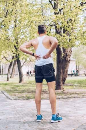 Photo for Back view of man in sportswear and sneakers standing in park and touching injured back - Royalty Free Image