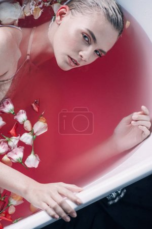 Photo pour Vue de dessus de la femme sexy dans la baignoire avec de l'eau rose et des pétales regardant la caméra isolée sur noir - image libre de droit