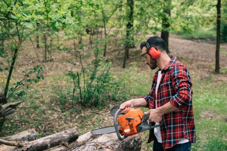 Photo for Adult lumberman in plaid shirt and hearing protectors cutting logs with chainsaw in forest - Royalty Free Image