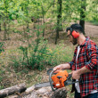 adult lumberman in plaid shirt and hearing protectors cutting logs with chainsaw in forest