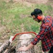 lumberman in hearing protectors cutting tree trunk  with handsaw in forest