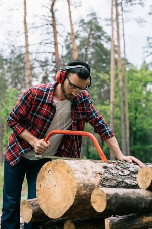 concentrated lumberjack in noise-canceling headphones cutting log with bowsaw in forest