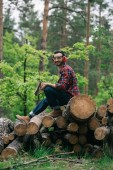 cheerful lumberjack holding ax while sitting on tree trunks in forest and smiling at camera