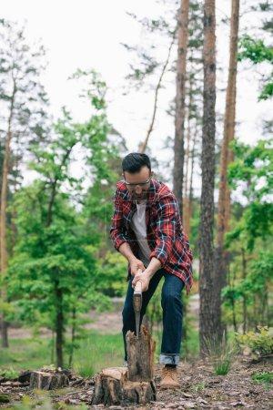 Foto de Leñador en jeans de mezclilla y camisa a cuadros cortando madera con hacha en el bosque - Imagen libre de derechos