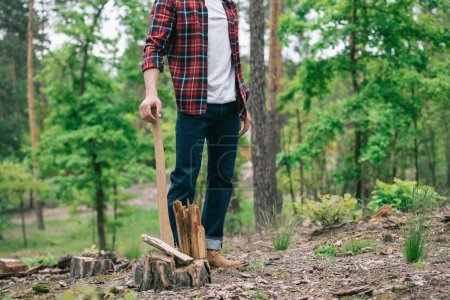 Photo for Partial view of lumberjack in plaid shirt and denim jeans standing with ax in forest - Royalty Free Image