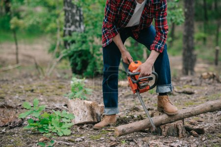 Photo for Cropped view of lumberman in plaid shirt and denim jeans cutting wood with chainsaw in forest - Royalty Free Image