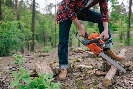 Photo for Cropped view of lumberjack in checkered shirt and denim jeans cutting wood with chainsaw in forest - Royalty Free Image