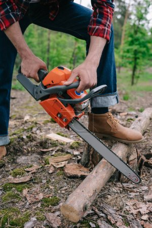 Photo for Cropped view of lumberjack cutting tree trunk with chainsaw in forest - Royalty Free Image
