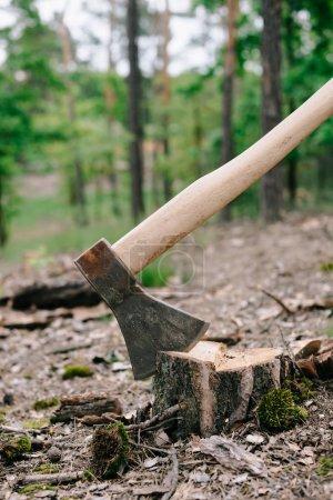 Photo pour Hache lourde et tranchante avec manche en bois sur souche de bois en forêt - image libre de droit