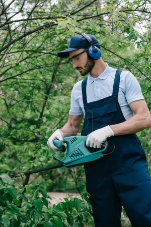 Photo for Gardener in noise-canceling headphones pruning bushes with electric trimmer - Royalty Free Image