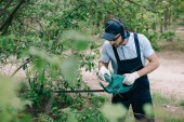 selective focus of gardener in overalls and cap pruning bushes with electric trimmer