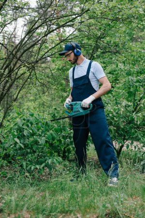 Photo for Gardener in overalls and noise-canceling headphones pruning bushes with electric trimmer - Royalty Free Image