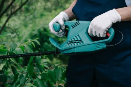 Photo pour Vue partielle des buissons de taille de jardinier avec le tailleur électrique dans le stationnement - image libre de droit