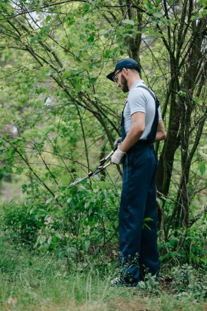 gardener in overalls and cap cutting bushes with trimmer in garden