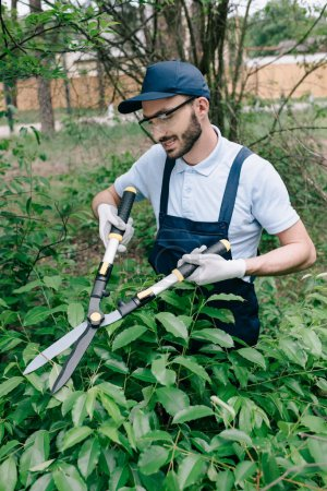 Photo for Smiling gardener in protective glasses trimming bushes with pruner in park - Royalty Free Image