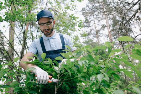 Foto de Jardinero positivo en gafas protectoras y arbustos de corte de gorra con recortador en el parque - Imagen libre de derechos