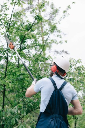 Photo for Back view of gardener in helmet trimming trees with telescopic pole saw - Royalty Free Image