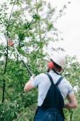 """Постер, картина, фотообои """"задний вид садовника в шлеме обрезки деревьев с телескопической полюс пилы"""""""