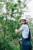 """Постер, картина, фотообои """"улыбаясь садовник в шлеме обрезки деревьев с телескопической полюс пилы и глядя в камеру"""""""