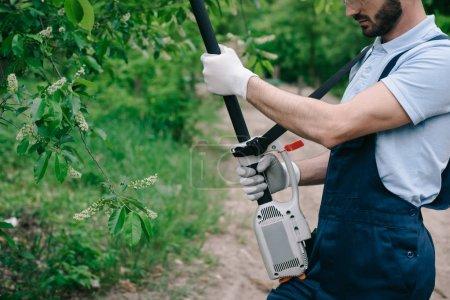 Foto de Vista recortada del jardinero en monos recortando árboles con sierra de poste telescópico en el jardín - Imagen libre de derechos