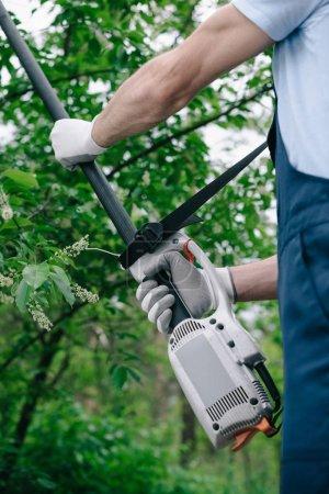 Foto de Vista parcial del jardinero en monos recortando árboles con sierra de poste telescópico en el jardín - Imagen libre de derechos