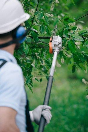 Photo pour Vue arrière des arbres de taille de jardinier avec la scie télescopique de poteau dans le stationnement - image libre de droit