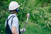 back view of gardener in helmet and earmuffs trimming trees with telescopic pole saw in park