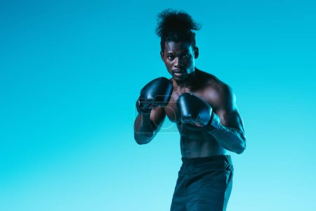 Photo for Confident african american boxer with muscular torso looking at camera on blue background - Royalty Free Image